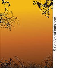 silhouette, nature