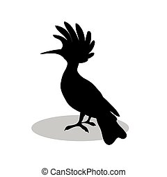 silhouette, noir, hoopoe, animal, oiseau