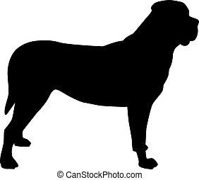 silhouette, noir, mastiff