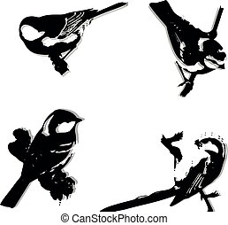 Silhouette of a big tit, bird on a branch.for white background,