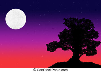 silhouette of a big tree agains the background of the evening sky with stars and moon