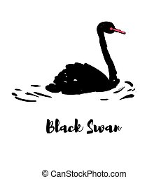 Silhouette of a black swan.