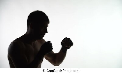 Silhouette of a boxer training in the gym on a white...