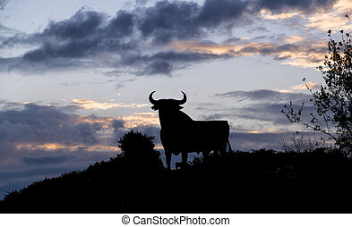 silhouette of a bull in the field in Spain