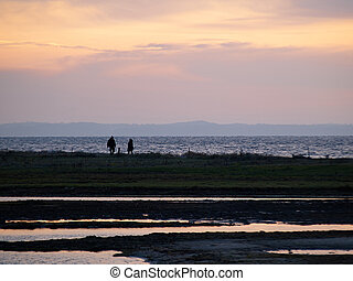 Silhouette of a couple walking on the beach at sunset