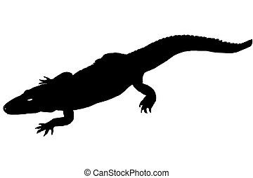 Silhouette of a Crocodile - Silhoette of a Crorcodile