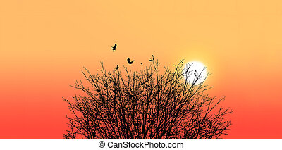 Silhouette of a death tree with crow on sunset background