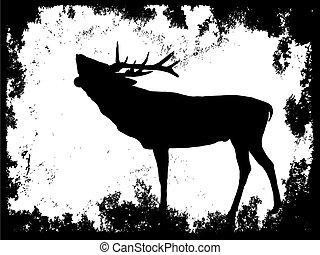 silhouette of a deer