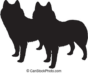 Silhouette of a dogs
