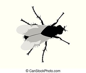 Silhouette of a fly on white background