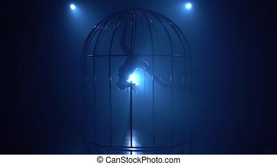 Silhouette of a girl spinning on a hoop on stage in a cages....