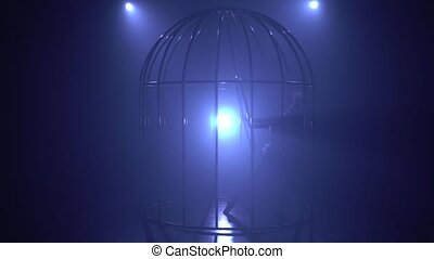 Silhouette of a girl spinning on the air hoop on the scene in a cages. Blue smoke background