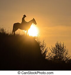 Silhouette of a guy sitting astride a horse over the edge of a cliff in the rays of the sun. Summer
