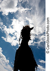Silhouette of a horse against the sky with clouds