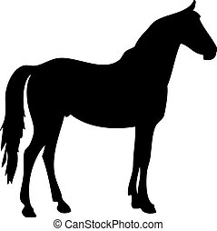 Silhouette of a horse2 - Vector illustration of a black...