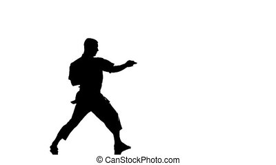 Silhouette of a karate man exercising against white background