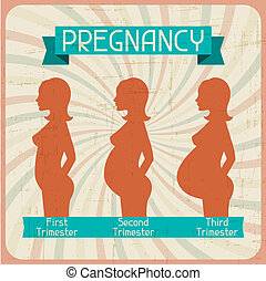 Silhouette of a pregnant woman in the three trimesters.