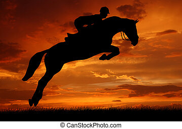 rider on a jumping horse - silhouette of a rider on a ...
