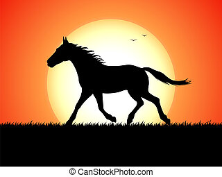 Silhouette of a running horse on sunset background