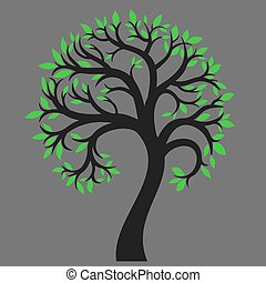 Silhouette of a tree 6