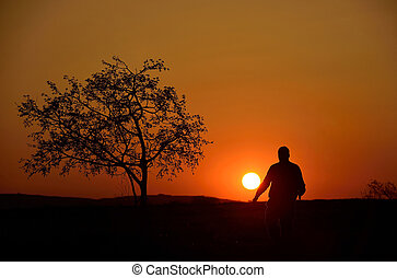Silhouette of a tree and a man in sunset background