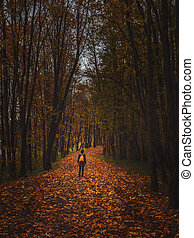 Silhouette of a woman from the back in the dark autumn forest. Vintage tinted