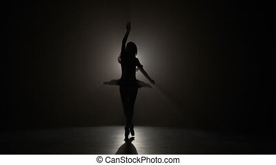 Silhouette of a young beautiful ballerina wearing pointe shoes and doing elegant pirouettes in slow motion