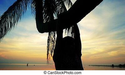 Silhouette of a young man hangs on a palm tree at beautiful sunset on the beach. slow motion. 1920x1080