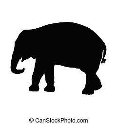 Silhouette of an elephant on a white background. Vector illustration