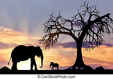 Silhouette of an elephant with calf