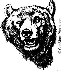 Silhouette of an evil grizzly bear (head), on white background,