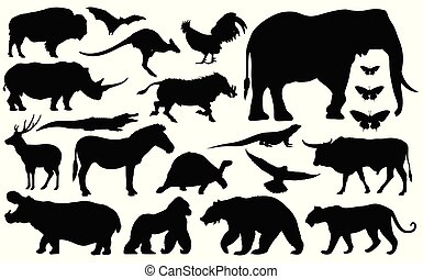 silhouette of animals