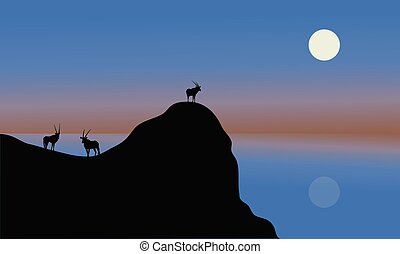 Silhouette of antelope in cliff