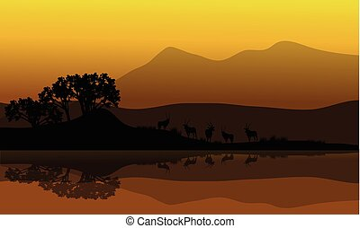 Silhouette of antelope in riverbank