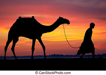 Silhouette of Arab with camel at sunrise - Silhouette of...