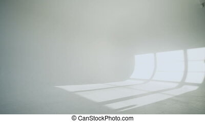 silhouette of ballerina in classical tutu in the white studio.