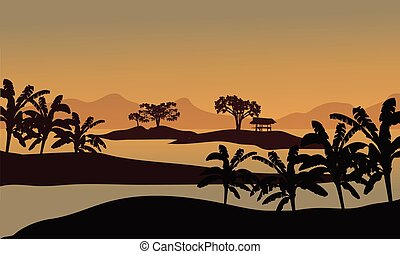 Silhouette of banana trees in riverbank