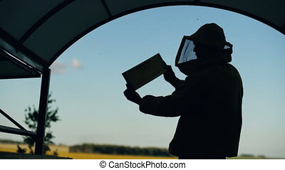 Silhouette of Beekeeper man checking wooden frame before harvesting honey in apiary