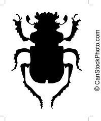 beetle - silhouette of beetle
