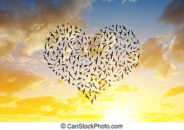 Silhouette of birds flying in heart formation.