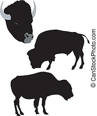 silhouette of bison