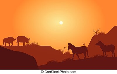 Silhouette of bison in hills