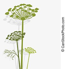 Silhouette of blooming fennel. Vector illustration