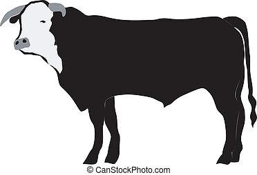 silhouette of bull