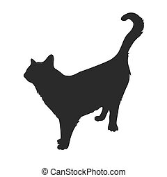 Silhouette of cat on a white background.