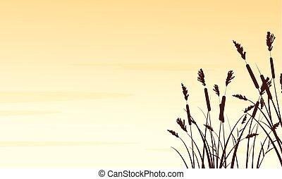 Silhouette of coarse grass landscape