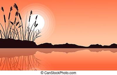 Silhouette of coarse grass on lake landscape