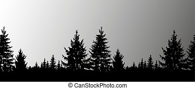 Silhouette of coniferous trees on the background of grey...