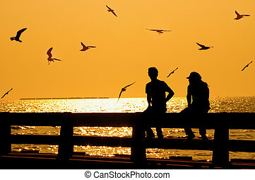 silhouette of couple with birds on bridge in sunset
