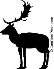 deer, side view